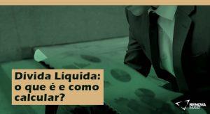 dívida liquida