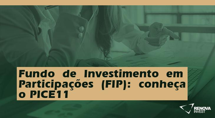 Fundo de Investimento em Participações (FIP): conheça o PICE11