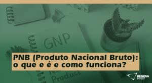 PNB (Produto Nacional Bruto)- o que e é e como funciona