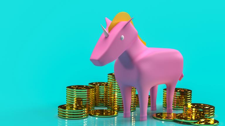 o que é uma empresa unicornio
